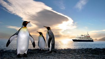 Expeditionsreisen zu den Pinguinen. Foto: Poseidon Expeditions