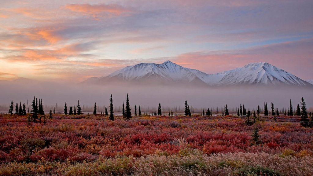 Blick auf die Berge des Alaska Range im Denali Nationalpark. Foto: Seabourn