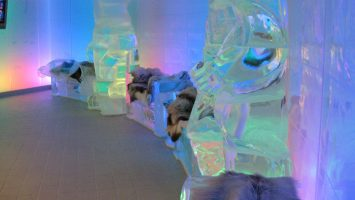 Cool: Die Ice Bar auf der Norwegian Epic. Foto: obs/Nees Reisen GmbH