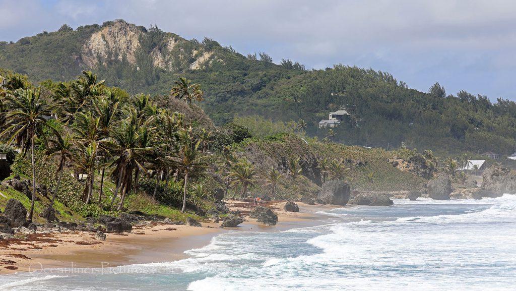 Atlantikküste bei Bathsheba, Barbados. / Foto: Oliver Asmussen/oceanliner-pictures.com