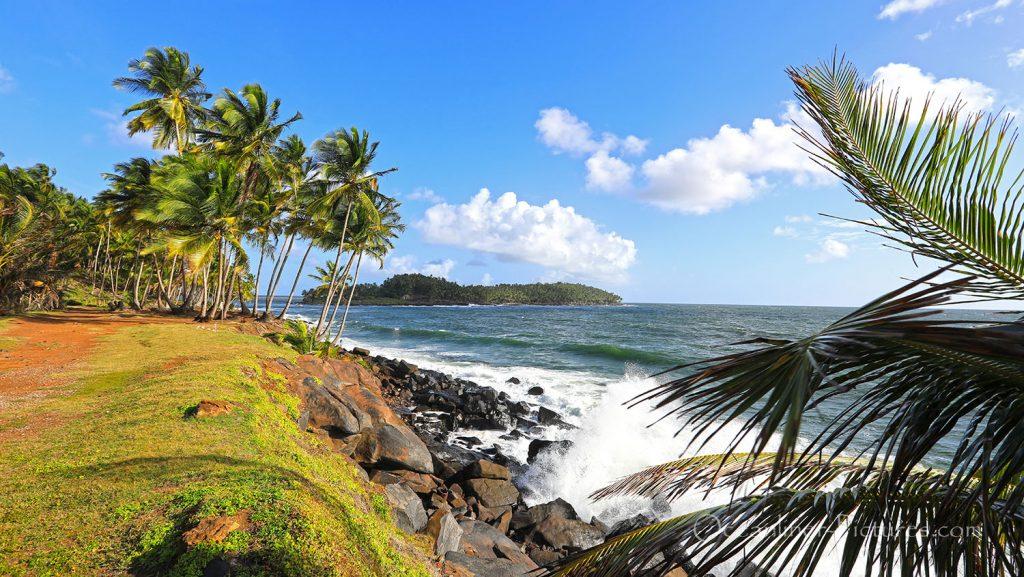 Ile Royale, Französisch Guyana. / Foto: Oliver Asmussen/oceanliner-pictures.com
