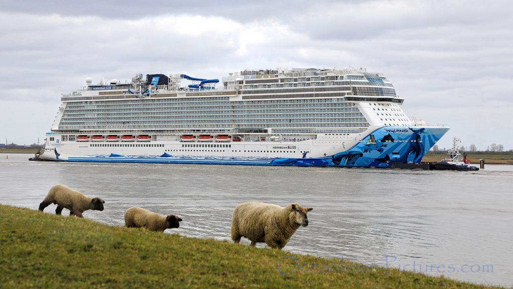 Norwegian Bliss auf der Ems. / Foto: Oliver Asmussen/oceanliner-pictures.com