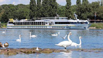 MS Elegant Lady auf dem Rhein bei Breisach. Foto: Oliver Asmussen/oceanliner-pictures.com