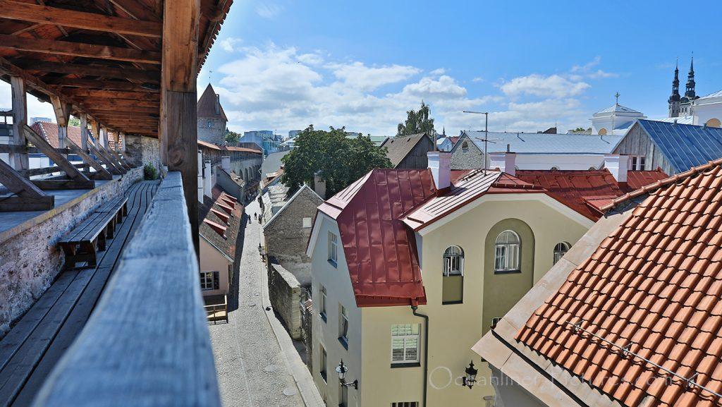 Blick von der Stadtmauer in Tallinn / Foto: Oliver Asmussen/oceanliner-pictures.com